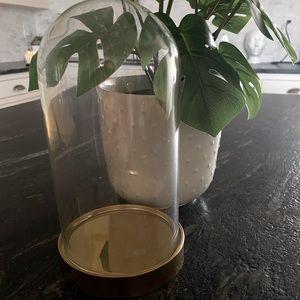 Aesthetic vase terrarium and fake rose